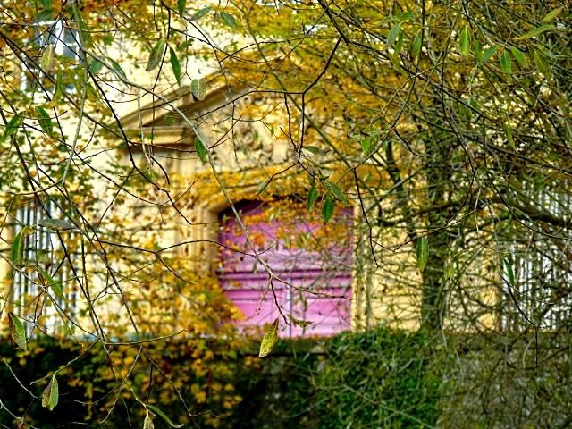 Metz en automne 9 Marc de Metz 2011