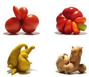 """Les légumes """"moches""""."""