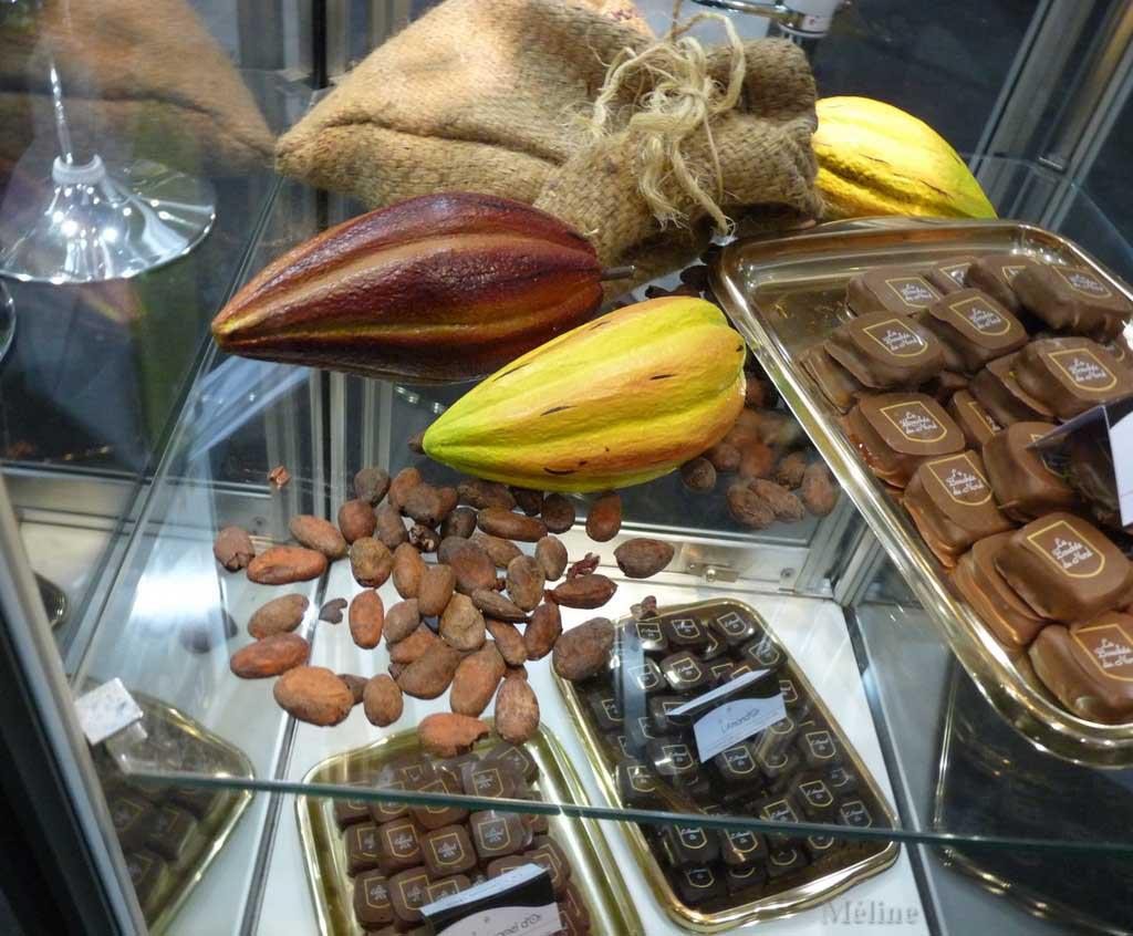 Le salon du chocolat (5)
