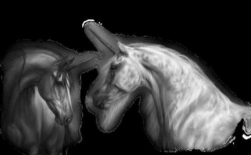 Licornes