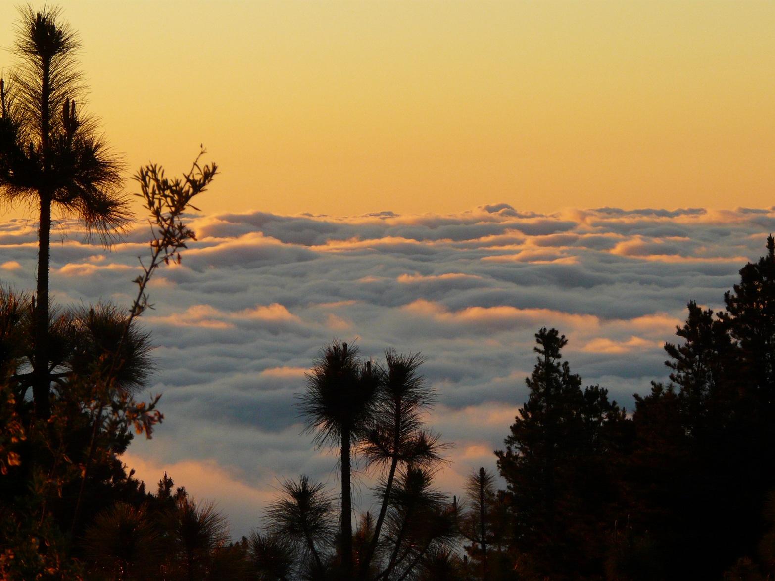 Tenerife mer de nuages