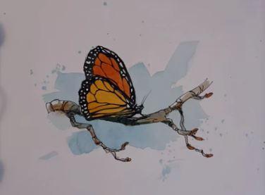 dessin et peinture vid o 1882 comment peindre simplement et facilement un papillon monarque. Black Bedroom Furniture Sets. Home Design Ideas