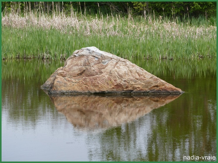 Roches et reflets.( Petites et grosses roches, rochers, toutes formes)