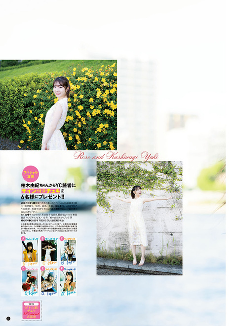 Magazine : ( [Young Champion] - 2020 / N°15 - Yuki Kashiwagi & 2020 11th MISS YOUNG CHAMPION AUDITION Staring )