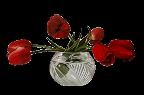 mtfp_226_tulips.png