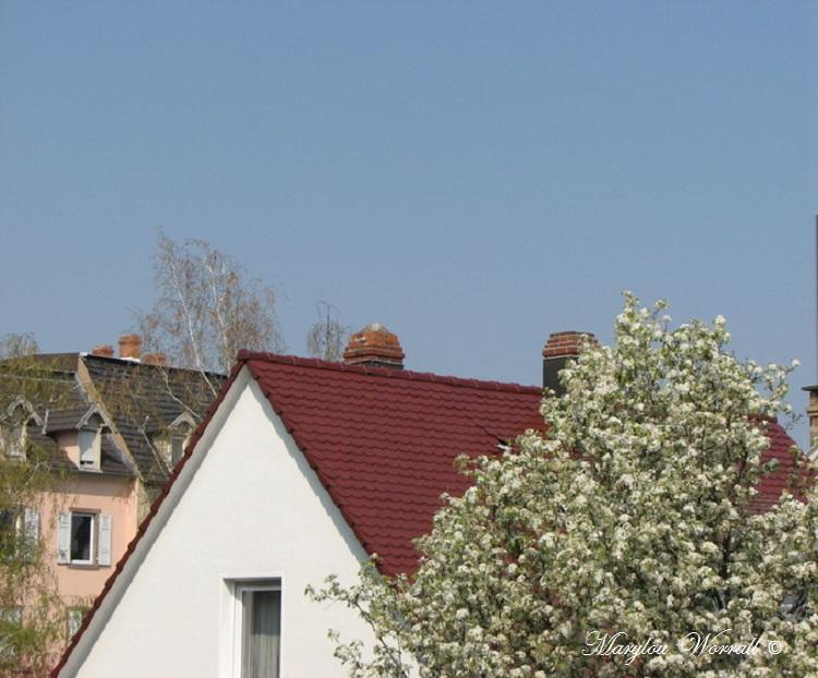 Ciel d'Alsace 408