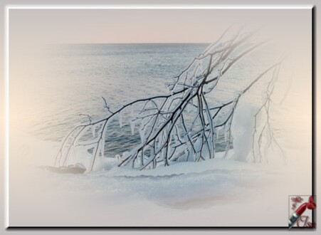 HI0011 - Tube paysage d'hiver