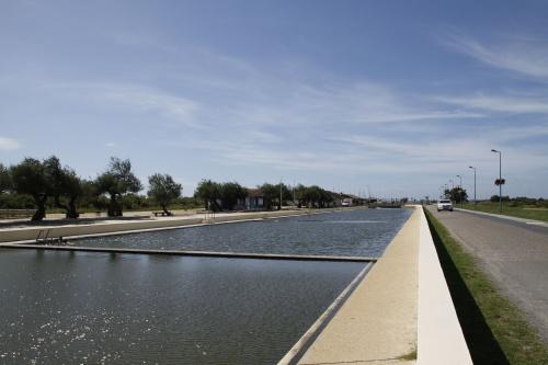Bassin d Arcachon 2