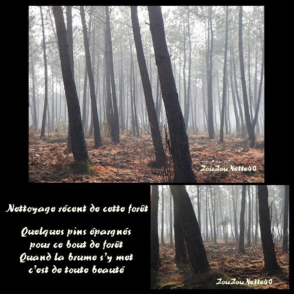 KLAUS-DEUX-ANS-APRES-30-01-2011.jpg