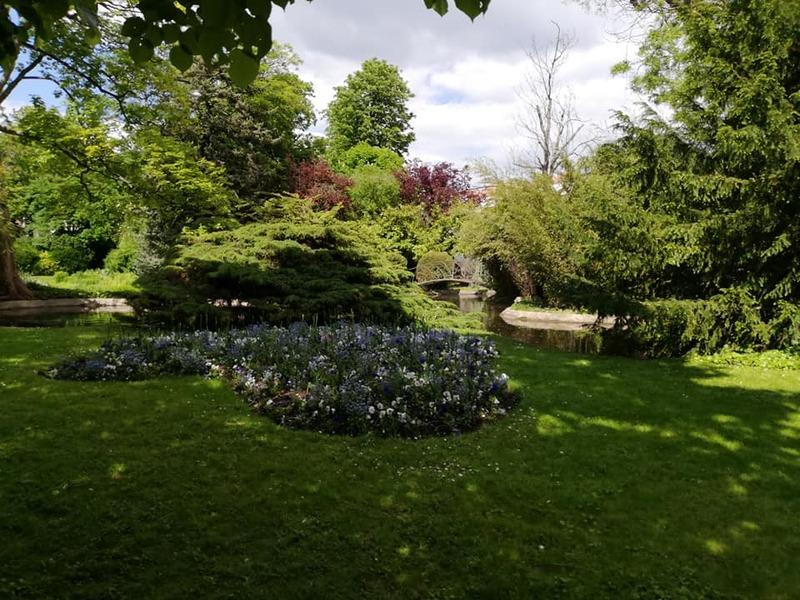 parc de la marquise suite - l'allée et le petit bois