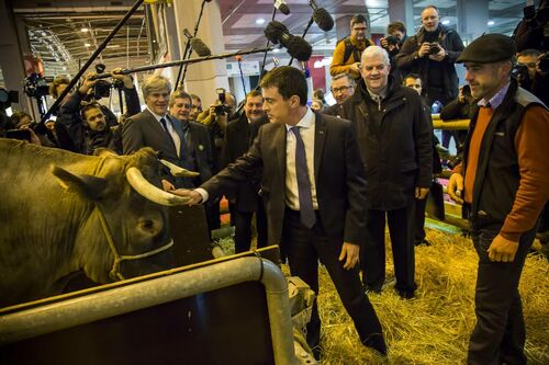 Le Salon des animaux politiques