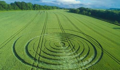 Crops circles 2016