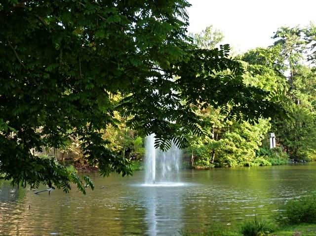Metz ville verte - mp1357 26 01 2011 21