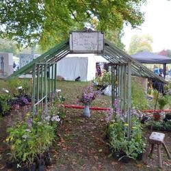 Courson-Chantilly : une édition d'automne sous le signe de la transmission...