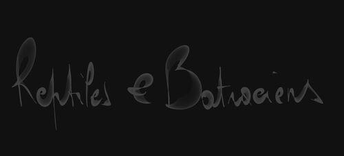 Galeries Reptiles & Batraciens