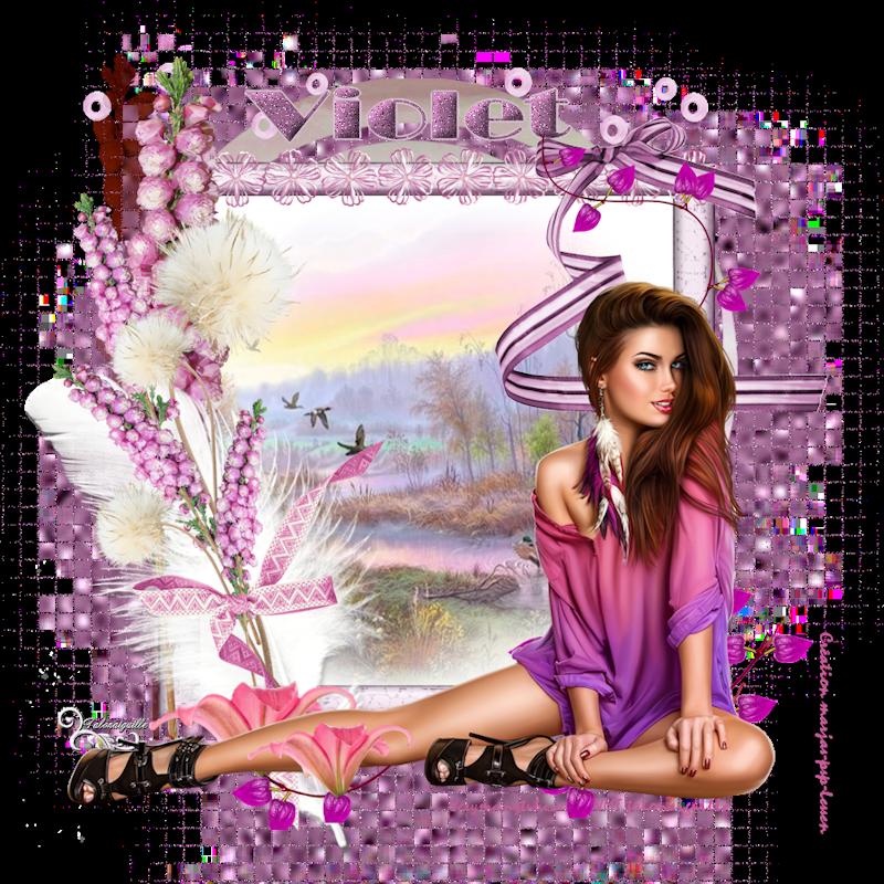 *** Les 348 - Violet ***