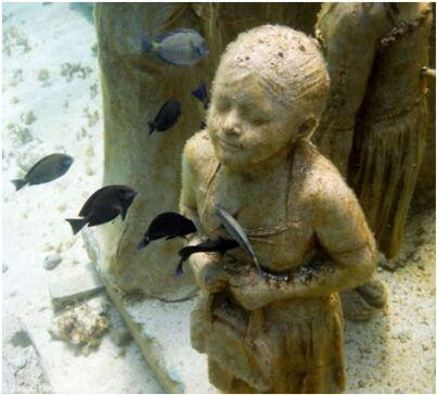 C´est l´heure de plonger dans les mers mexicaines...