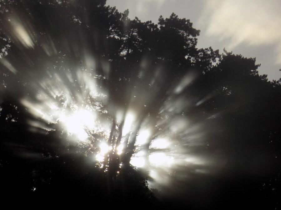 Lueur de l'aube sue les cimes