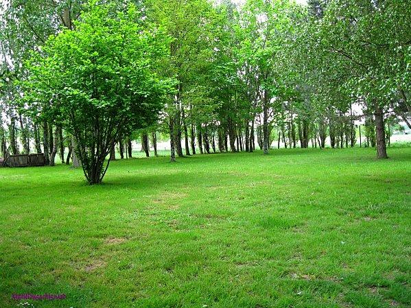 Jardin-042011 0983 (Copier)