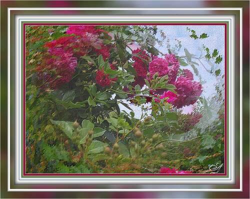 De la photographie à l'effet peinture