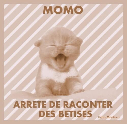-DE RETOUR APRES MON LONG SILENCE.......