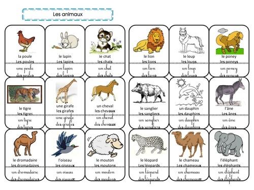 Cahier de mots : les animaux