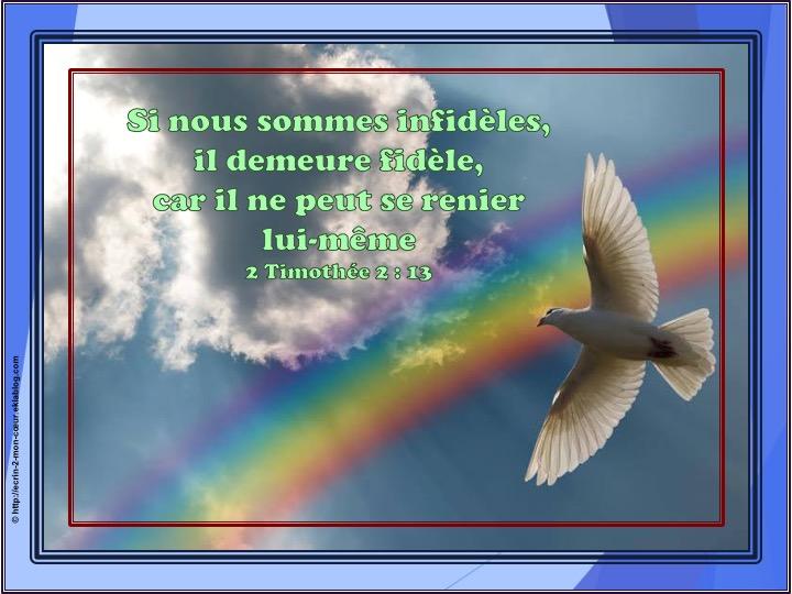 Il demeure fidèle - 2 Timothée 2 : 13
