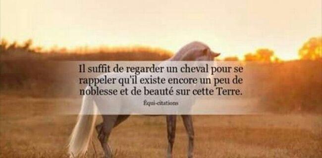 "Coups d'coeur ""5"" ..."