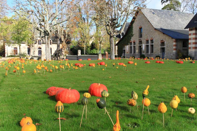 Delire d'automne du jardinier