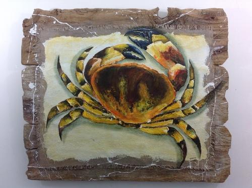 Crabe sur bois flotté