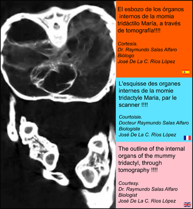 Alien Project : Les momies du Pérou/3