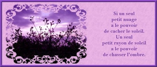 Belle citation