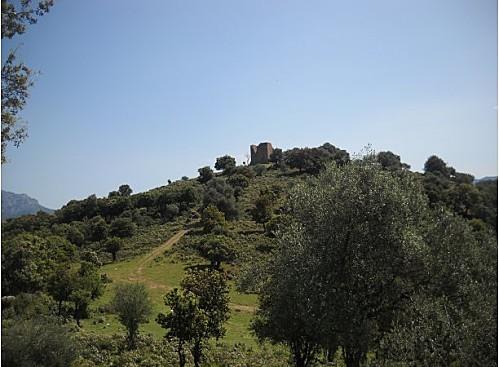la tour genoise