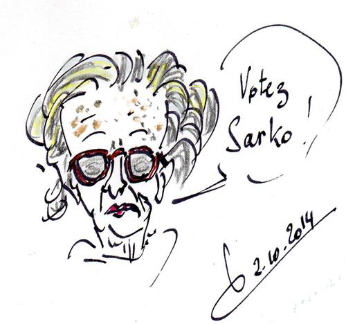Chirac-Juppé/contreChirac-Sarkozy/2017/ Bismuth pholcone