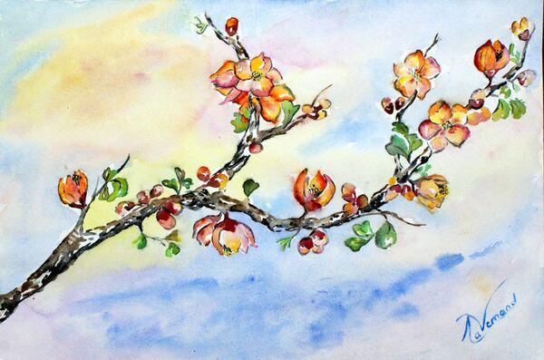 Fleurs d'aurore - Aquarelle - Branche de pommier