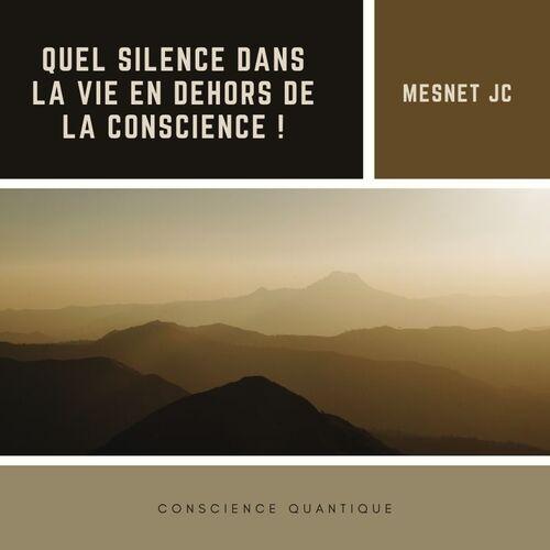 Quel SILENCE dans la VIE en dehors de la conscience !