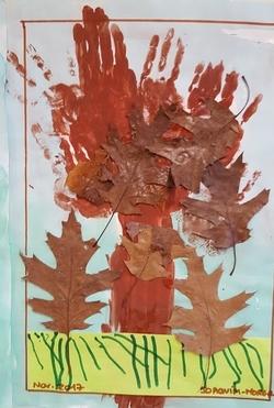 Les arbres d'automne des PS de N.