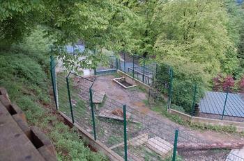 Parc animalier Bouillon 2013 enclos 104
