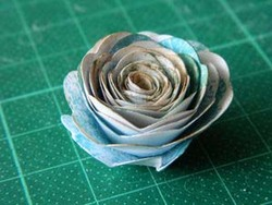 Fleurs roulottées
