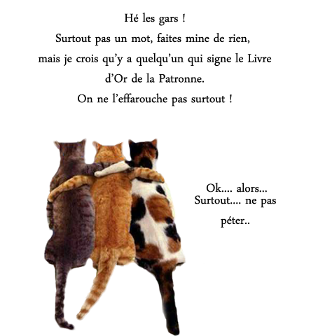 Divers animaux