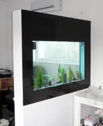 aquarium g