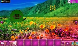 Jouer à Flower peak valley escape