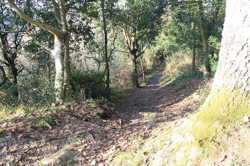 839 - De l'Aven au Bélon, il n'y a qu'un pas (29S) !