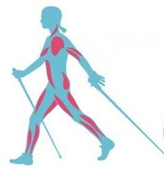 Transformez votre corps avec la marche nordique !