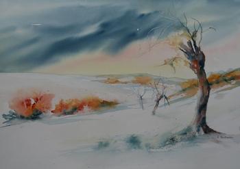 Solitaire sous la neige [800x600]