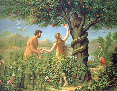 La première histoire de pommes ...