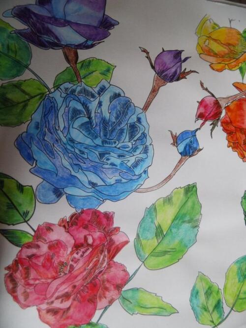 coloriage fleurs et jardin