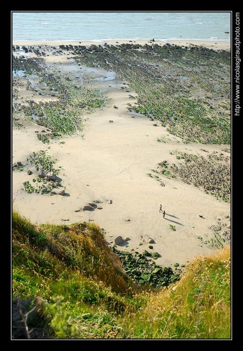 Plages de Rêve en Seine Maritime...