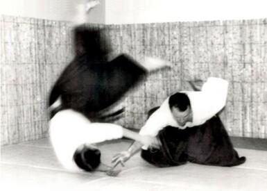 À propos de Te no Michibiki, histoires, anecdotes, théorie et pratique (un peu)