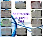 PictureIt 204 - Sniffmouse